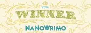 Winner-2014-Web-Banner (1)