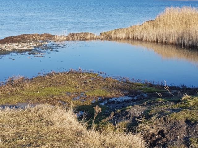 mooie-wandeling-grevelingenmeer