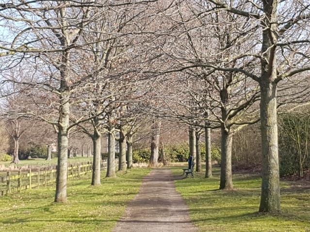 park-clingendael-wandeling-ingang-van-alkemadelaan