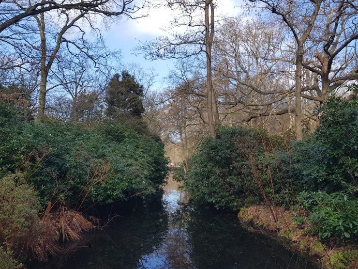 park-clingendael-wandeling-weerspiegeling